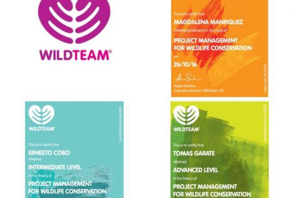 Certificación en Project Management for Wildlife Conservation